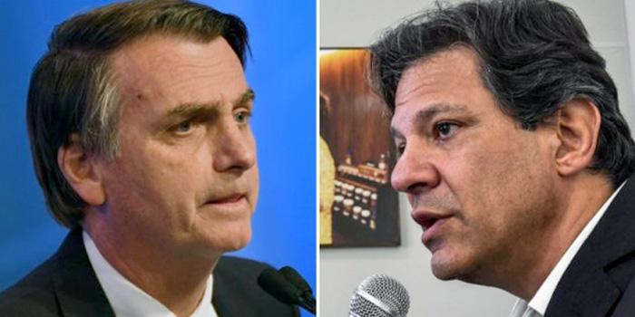 Bolsonaro x Haddad .