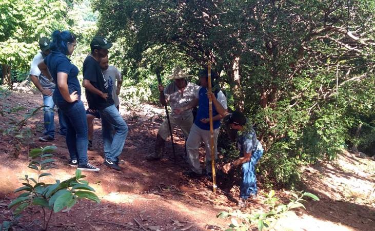 A semana começou com o curso Trabalhadores Florestais Polivalentes Recuperação de Áreas Degradadas